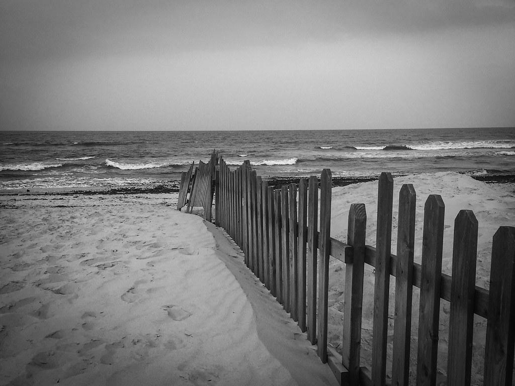 Palisade at the shore.