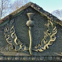 Carved thistle on gravestone of Nathaniel Wilson who died in 1842. Buried at Banchory