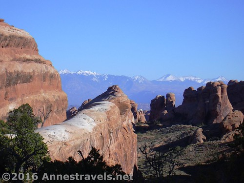 The La Sal Mountains from the Devil's Garden Trail, Arches National Park, Utah