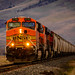 Afternoon Freight Train by HarryMiller002