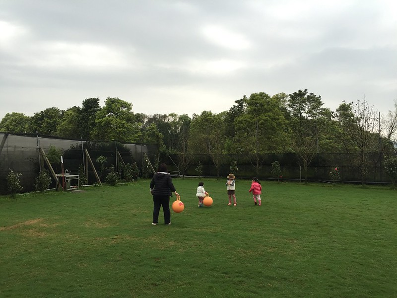 寶妹和鄰居玩球
