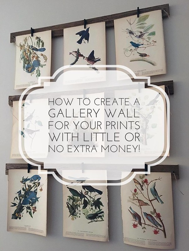 How to Create a Gallery Wall With Vintage Bird Prints (or your favorite prints) - With Little or No Extra Money!