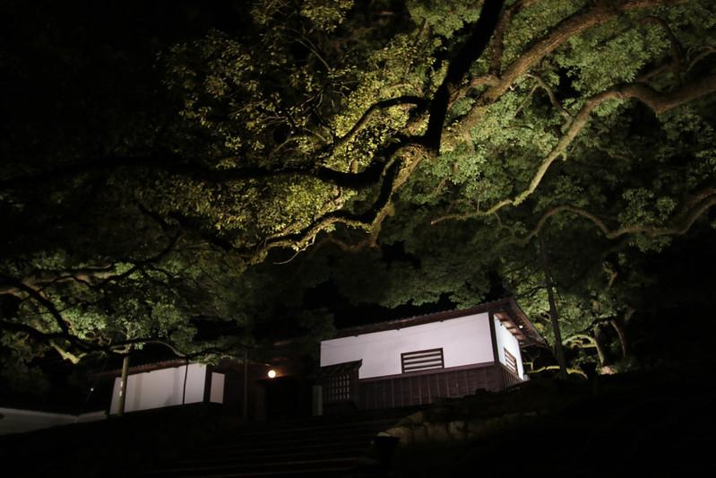 20141122-武奈ヶ岳&京都ライトアップ-0558.jpg