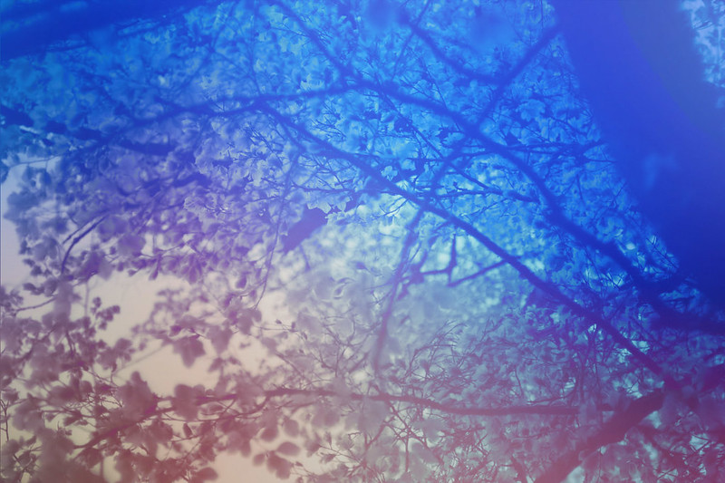 blur-dreamy-texture-texturepalace-81