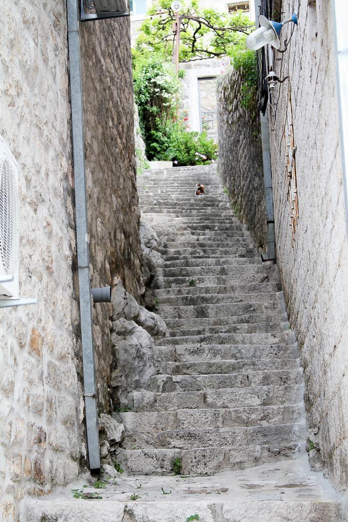 1505_montenegro_1334.jpg