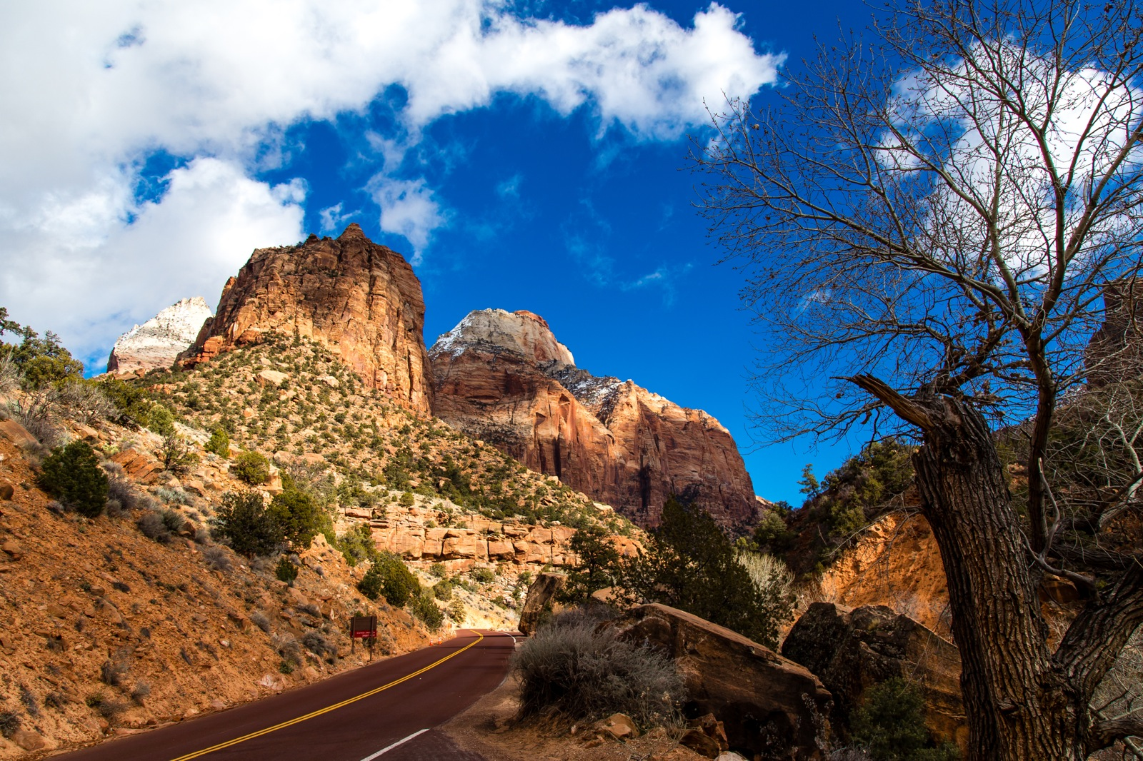 Zion National Park-9267