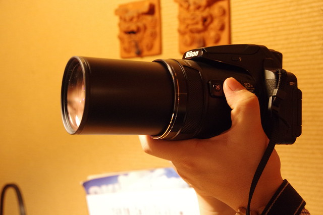 Nikon COOLPIX P900-29
