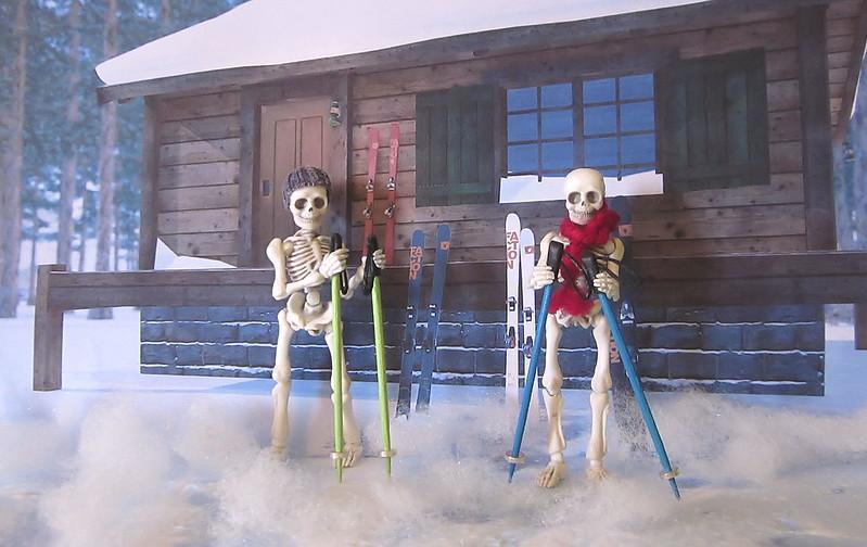 Skeleton Ski Trip