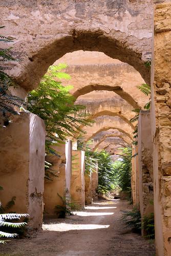 Anciennes écuries Meknès