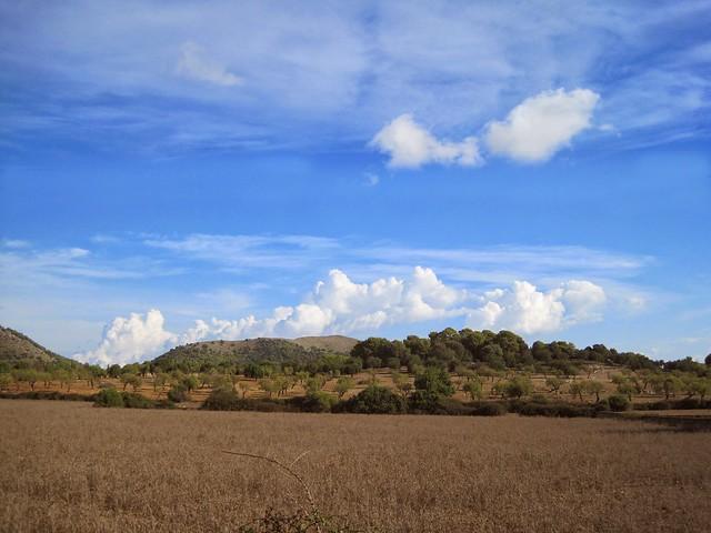 2014 Mallorca - Sineu