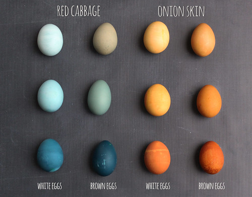 white_brown_egg_dye_chart_text