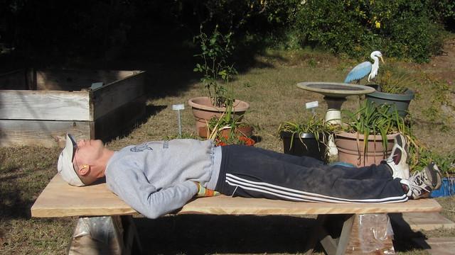 IMG_8579 tt redwood bench