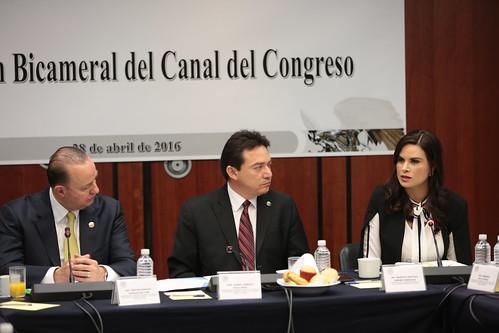 Comisión Bicamaral del Canal de Televisión del Congreso de la Unión 28/abr/16