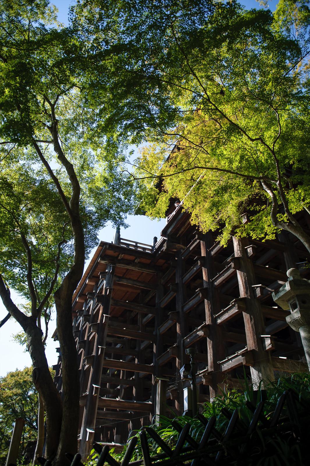 2015VQ@Kyoto-458