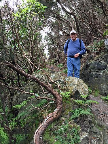 Baias do Agualva Trail -Kathy 9d