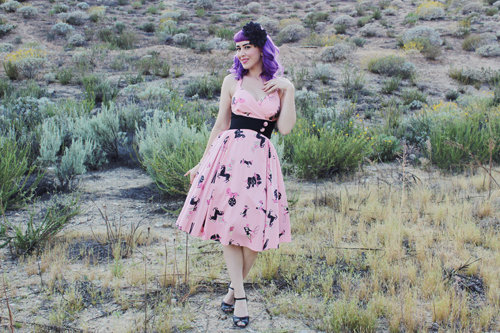 Pinup Girl Clothing Pinup Couture Zooey Dress in Circus Print