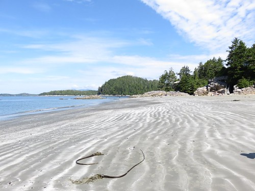 Victoria - Nanaimo -Tofino - Ucluelet - Nanaimo (21 au 24/07/2015)