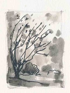 Sketchbook #94: Winter Trees (Short)