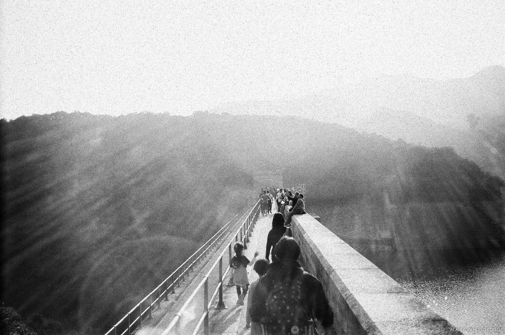 A bridge to the nature