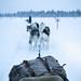 Arctic Life by BricePortolano