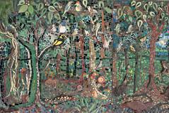 The bird filled rainforest