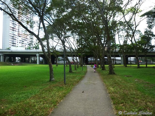 Bukit Timah Plaza 04