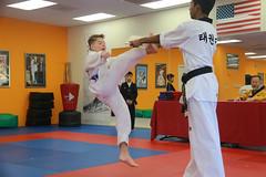 Taekwondo (196)