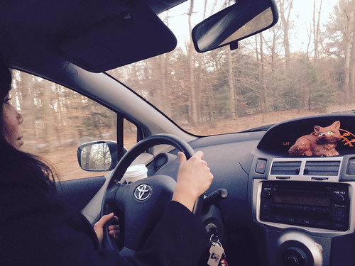 Ana at the Wheel (February 13 2015)