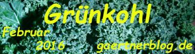 Garten-Koch-Event Februar: Grnhkohl [29.02.2016]