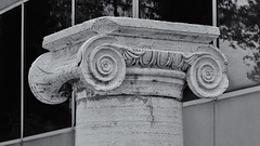 Ionic Capital, Steinberg Family Sculpture Garden