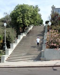 001 The Dash Up Laveta Terrace Stairway