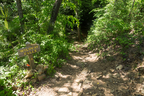 Short path to Wildcat Creek Falls