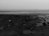 Strand - Kasai