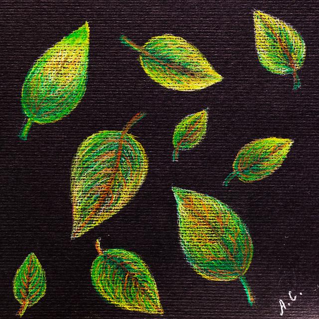 Leaves on black. Colored pencils Derwent Coloursoft 12