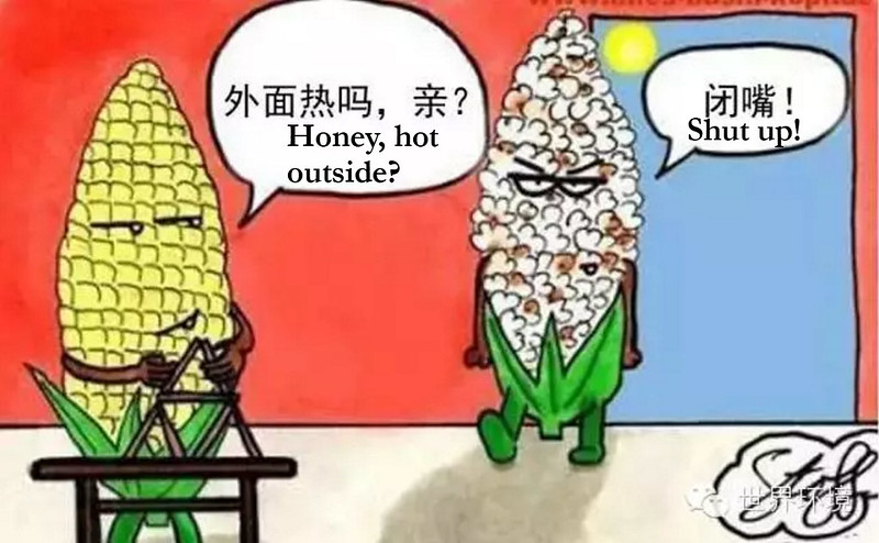 Dialogue between corn and popcorn about heat, courtesy of World Environment magazine