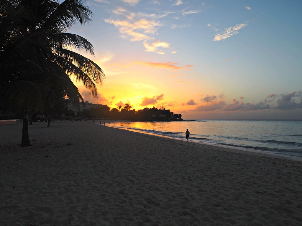 Barbados Travel Guide and Photo Diary The Little Magpie 88