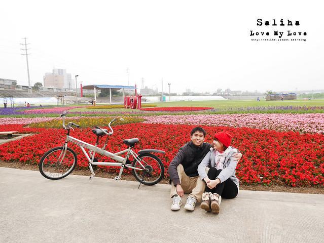 社子島溼地水鳥自行車道 (12)