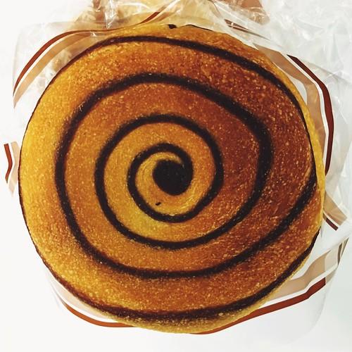 Hypnotic Chocolate Bun