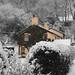 """Snow Day!! by """"Daz"""""""