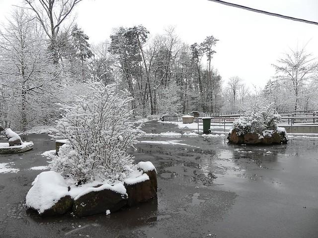 Aqua-Park, Tiergarten Nürnberg