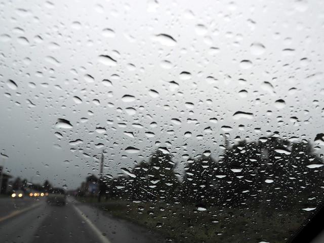 Rainy windows