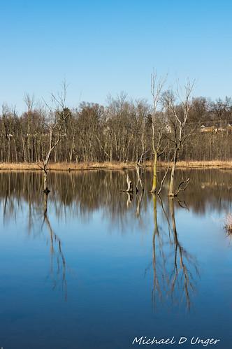 trees water reflections landscape unitedstates pentax michigan bigma k3 middleville lenstagger sigma50500f4563oshsm