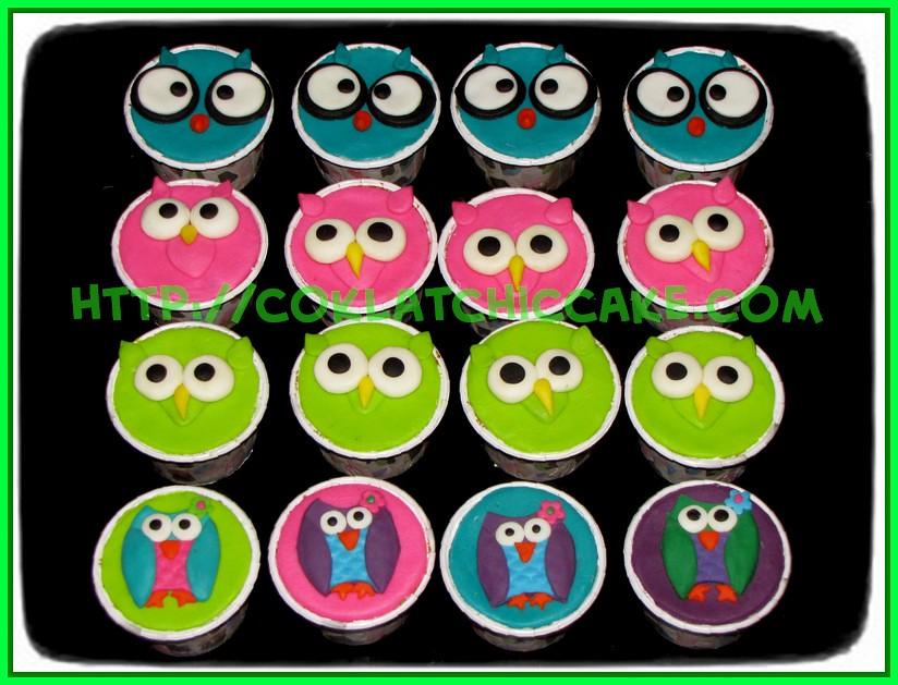 Minicupcake owl