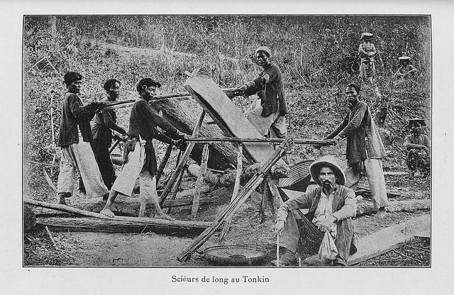 Scieurs de long au Tonkin