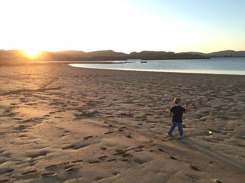 Throwing rocks at sunset