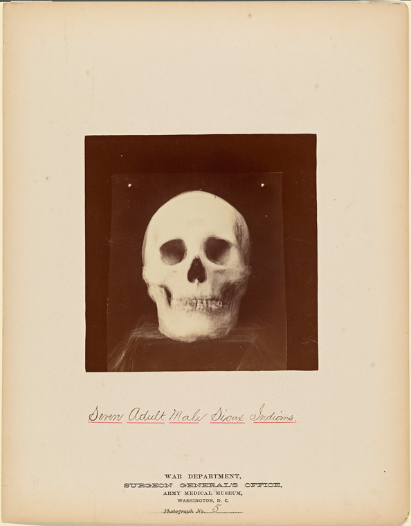 nypl.digitalcollections.015fdc10-2289-0132-a5b8-58d385a7bbd0.001.w