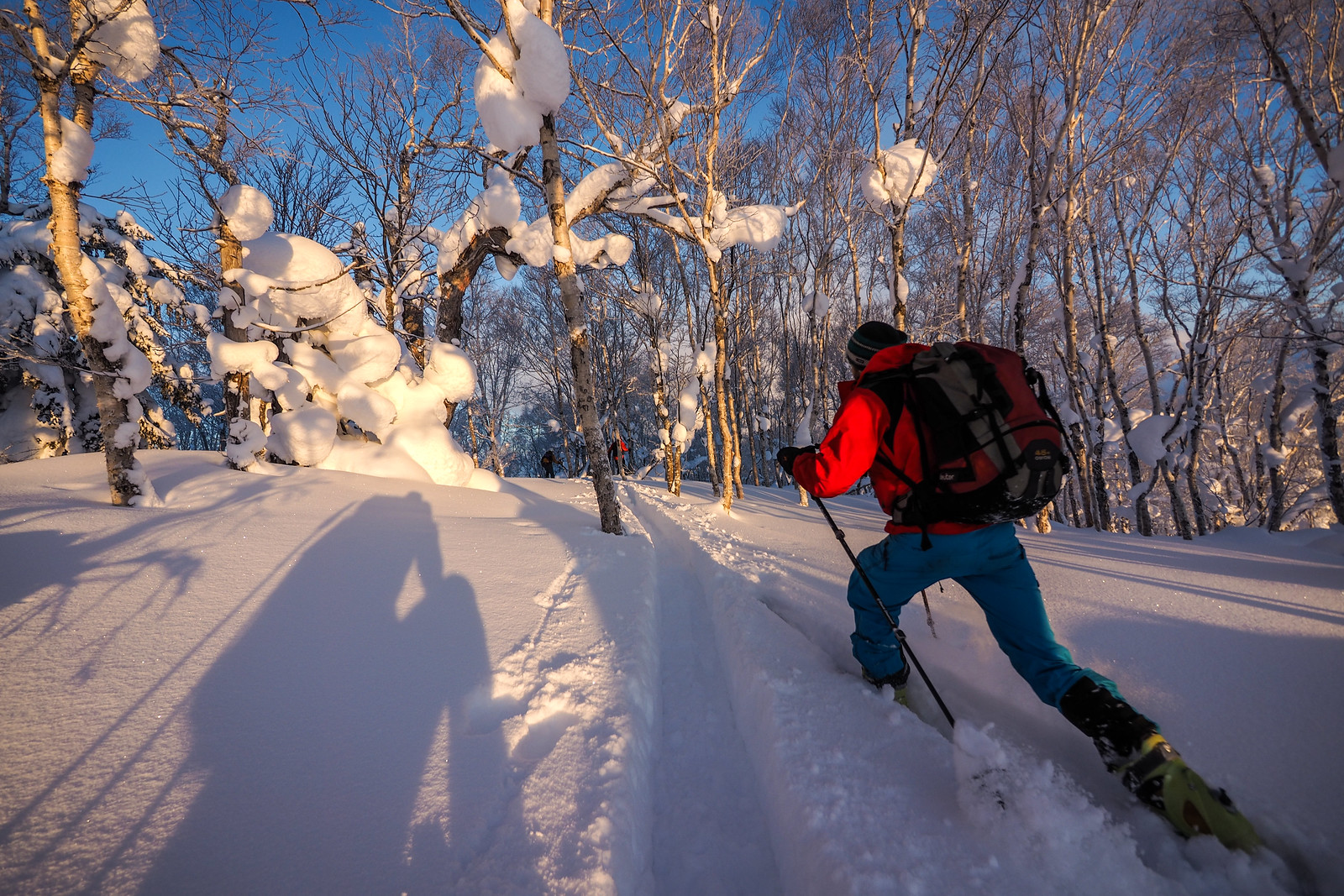 Early morning backcountry skiing near Yama-no-ie Hut (Mt. Okuteine, Hokkaido, Japan)