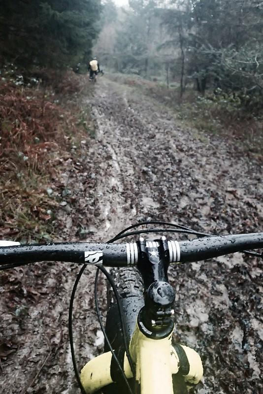 FoDing Muddy