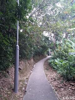 CIRCLEG 遊記 坪洲 一天遊 一日遊 圖文 船 香港 (24)